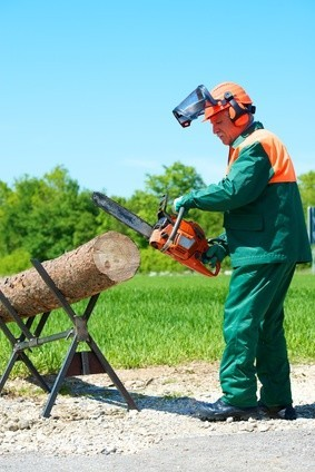 Eine der Aufgaben eines Forstwirts: das Zurechtschneiden von Bäumen. © AK-DigiArt - Fotolia.com