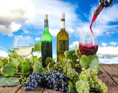 Sie lieben Wein? Schon mal nicht schlecht für diese Ausbildung... © doris oberfrank-list - Fotolia.com