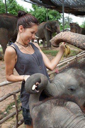 was verdient ein tierpfleger im zoo